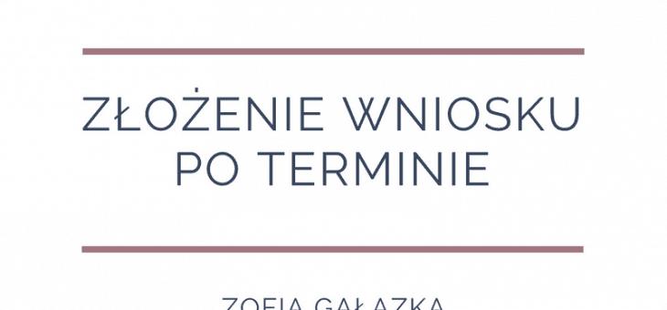 Publikacja Puls Biznesu – Złożenie wniosku poterminie.